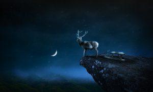 deer-1934831_1280